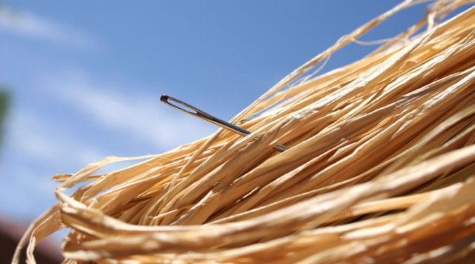 Needle-in-a-haystack